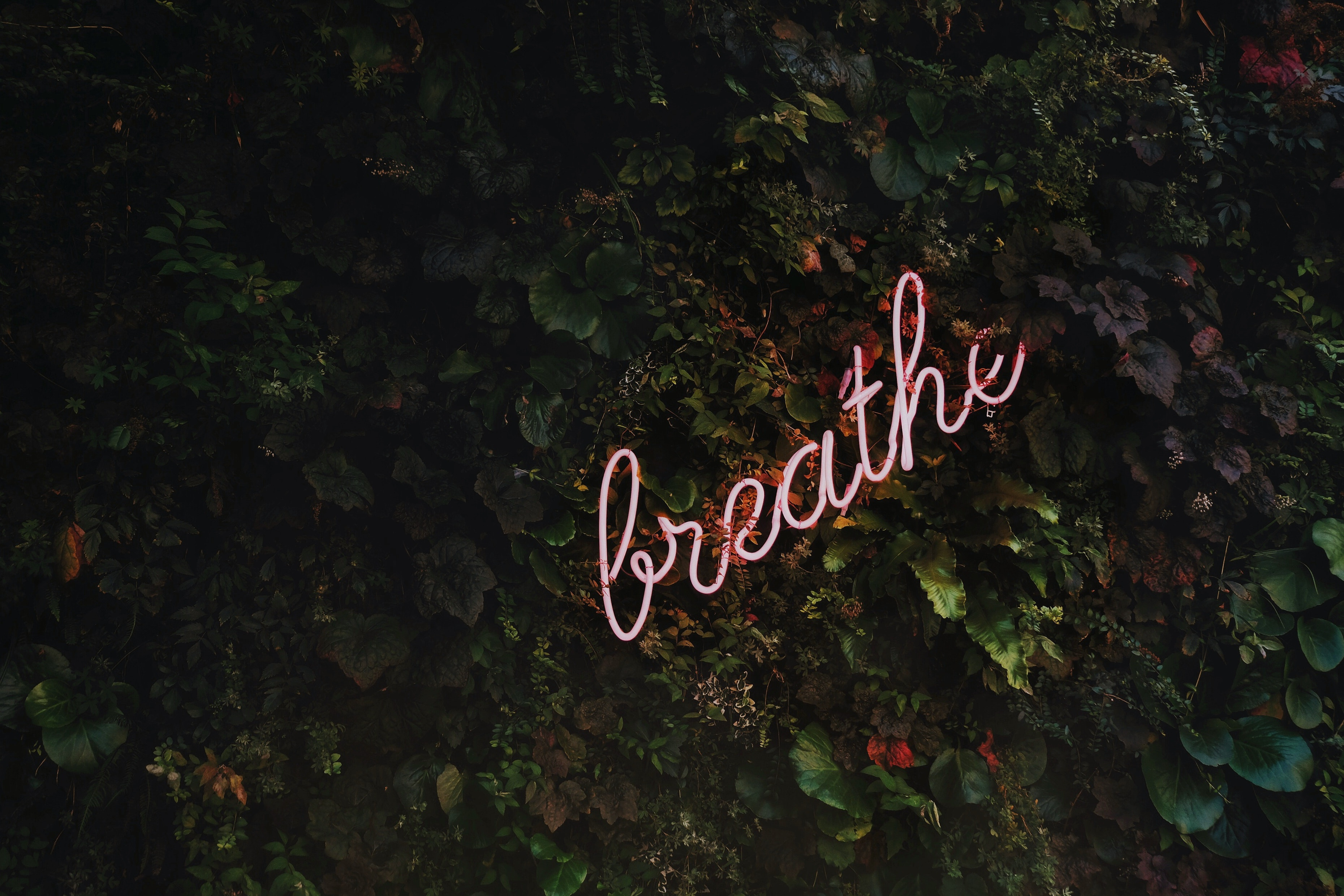 Three Easy Breathing Techniques to Help with Worry and Anxiety